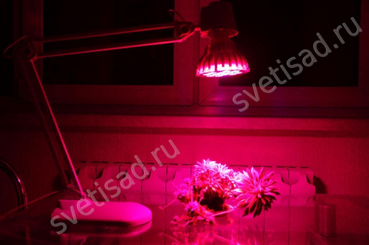 Светодиодная фитолампа Espada Fito LED E27-10-10W 85-265V