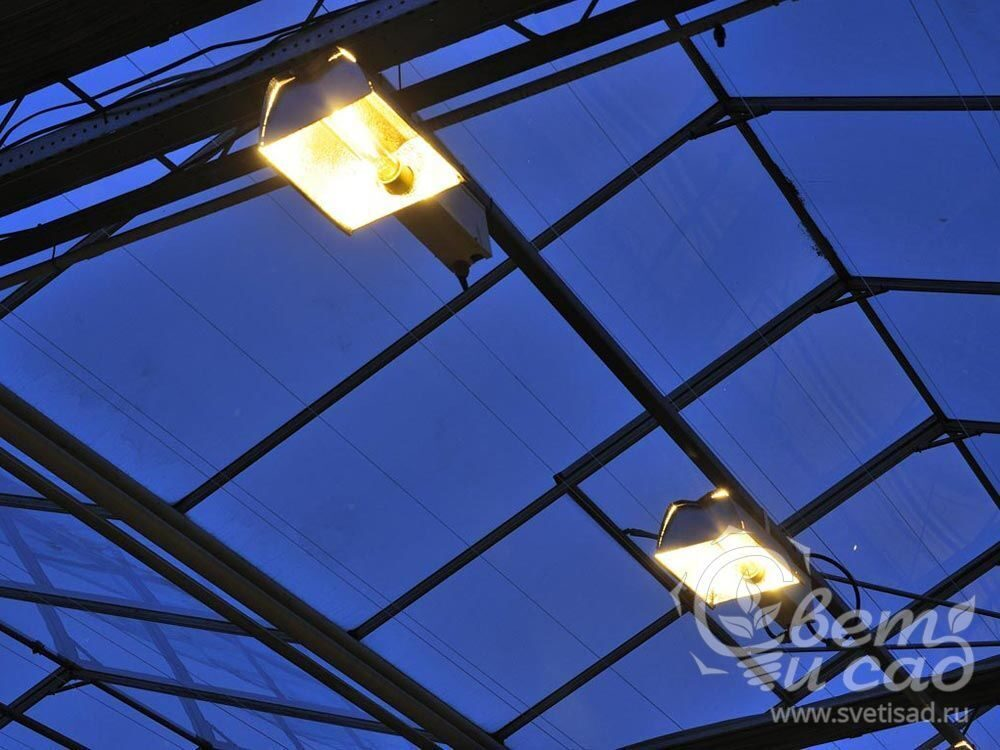 Светодиодные лампы для теплицы своими руками