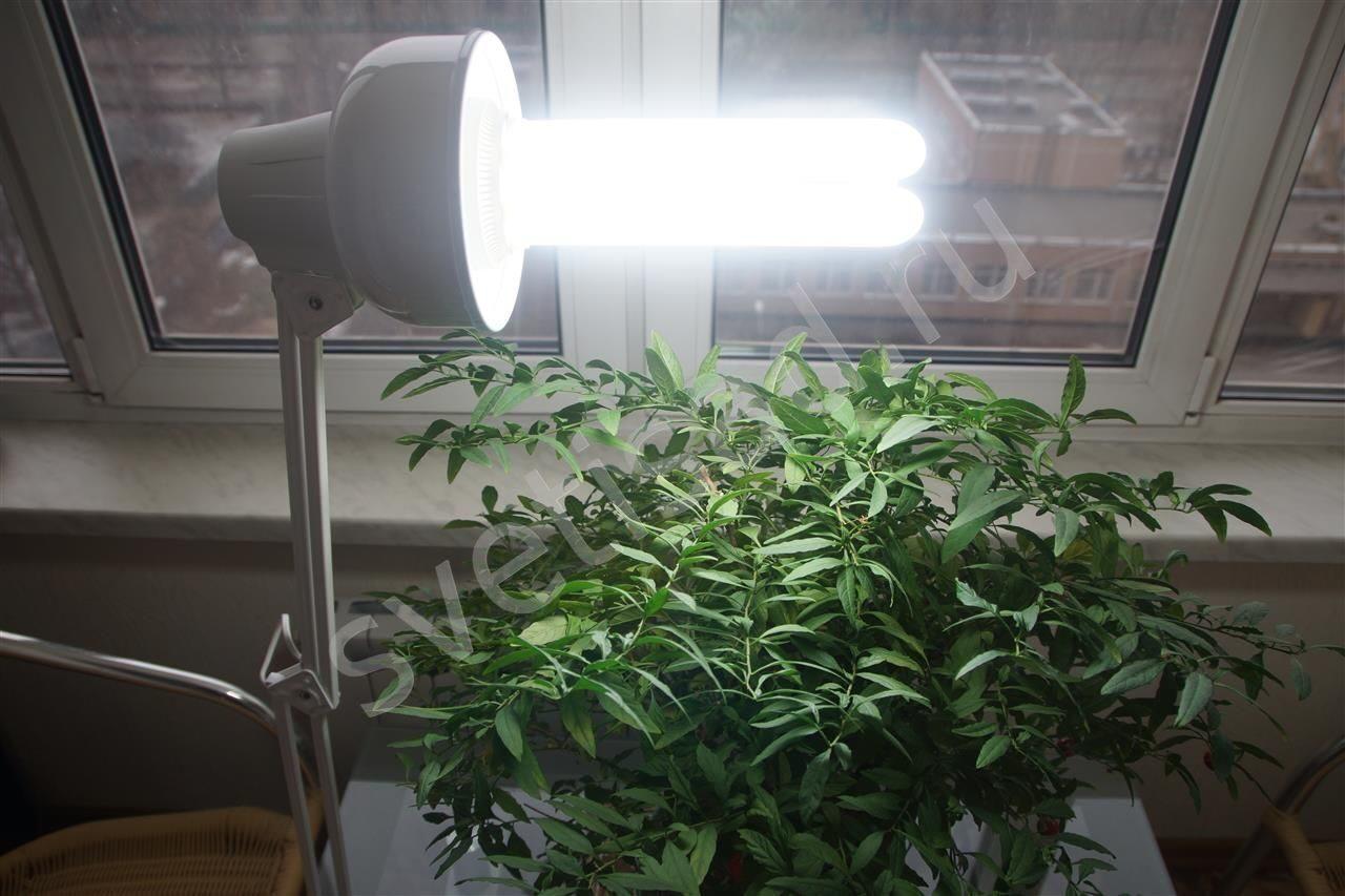 Светодиодные люстры LED купить в Украине - цены