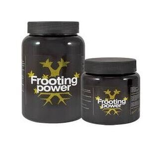 bac-frooting-power-powder