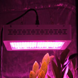 MarsHydro-LED-Grow-Light-300W-600W-Full-Spectrum-60-x-5W-120x5W-Indoor-Medical-grow
