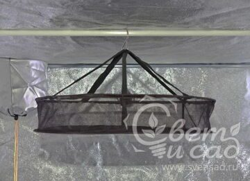 grow-tent-Mammoth-Dry45-In-Tent