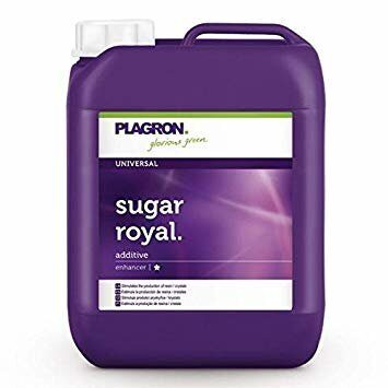Plagron-Sugar-Royal-5-L_1